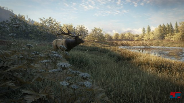 Screenshot - theHunter: Call of the Wild (PS4)