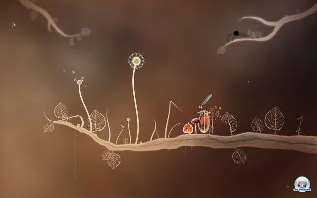 Screenshot - Botanicula (PC) 2343562