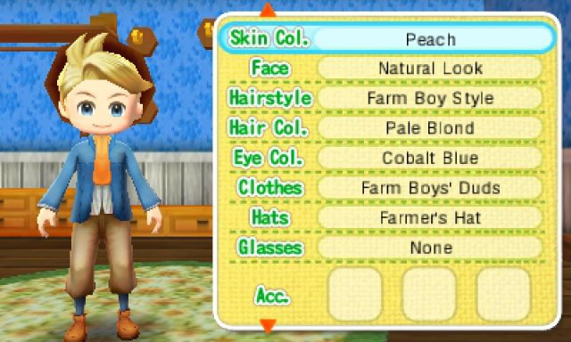 Screenshot - Story of Seasons (3DS)
