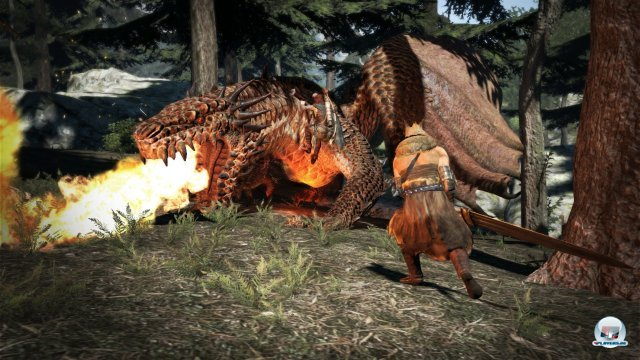 Screenshot - Dragon's Dogma (360) 2326812