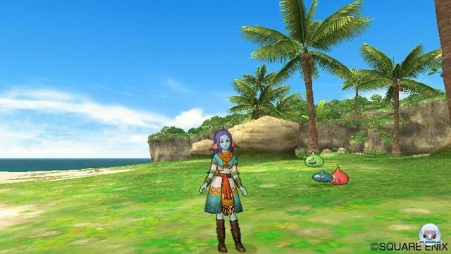 Screenshot - Dragon Quest X Online (Wii) 2282142