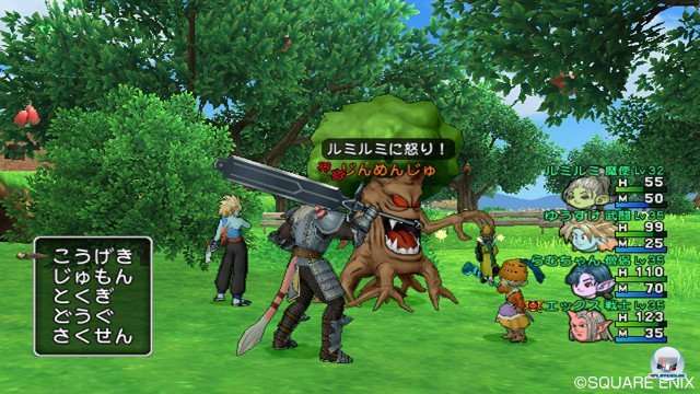 Screenshot - Dragon Quest X Online (Wii) 2368847