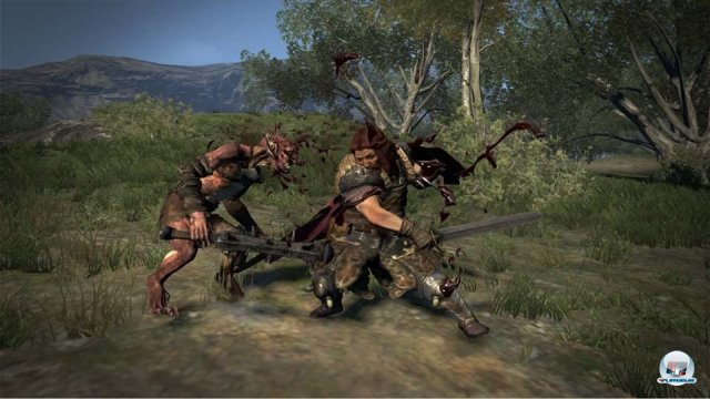 Screenshot - Dragon's Dogma (PlayStation3) 2295347