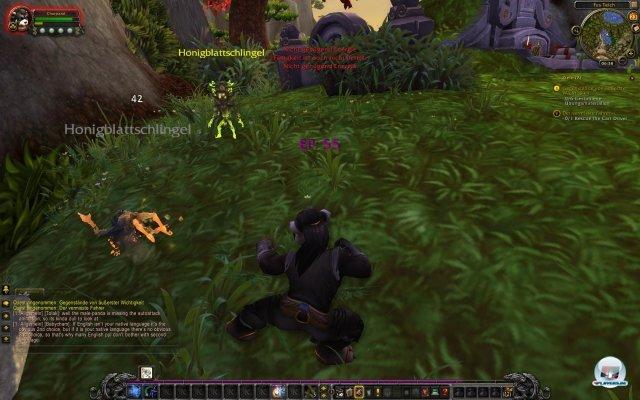 Screenshot - World of WarCraft: Mists of Pandaria (PC) 2333042