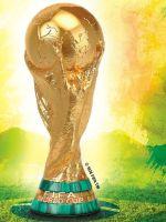 Alle Infos zu FIFA Fussball-Weltmeisterschaft Brasilien 2014 (360)